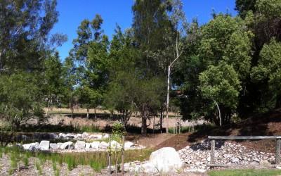 Creek Filtration System Program