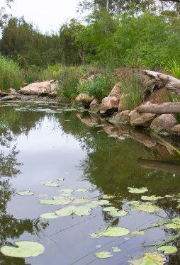 Bundamba Creek