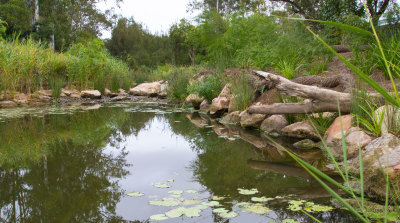 Bundamba Creek